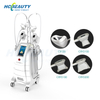 Professional Cryolipolysis Equipment for Fat Removal